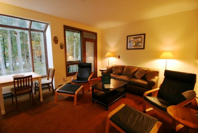 Mt. Baker Lodging Condo #28 – FIREPLACE, DISHWASHER, WIFI, W/D, SLEEPS-4! photo 59763