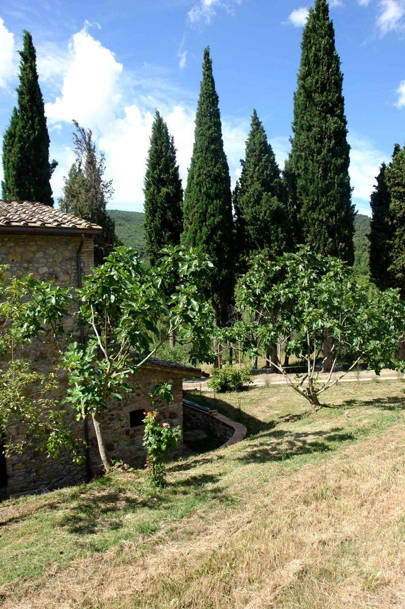 Apartment Tenuta Le Sodole - Holiday Home Il Glicine photo 31807871