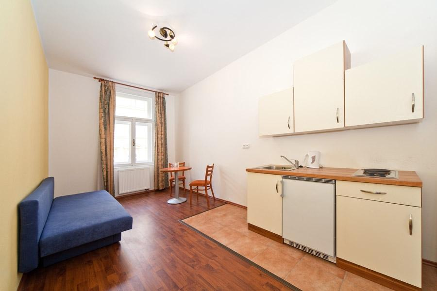 Spacious and cozy apartment in City center of Prague for four people photo 31595337