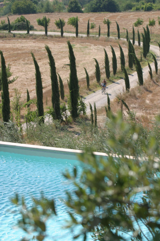 Tenuta Il Tresto - Primula Holiday Home photo 31804871