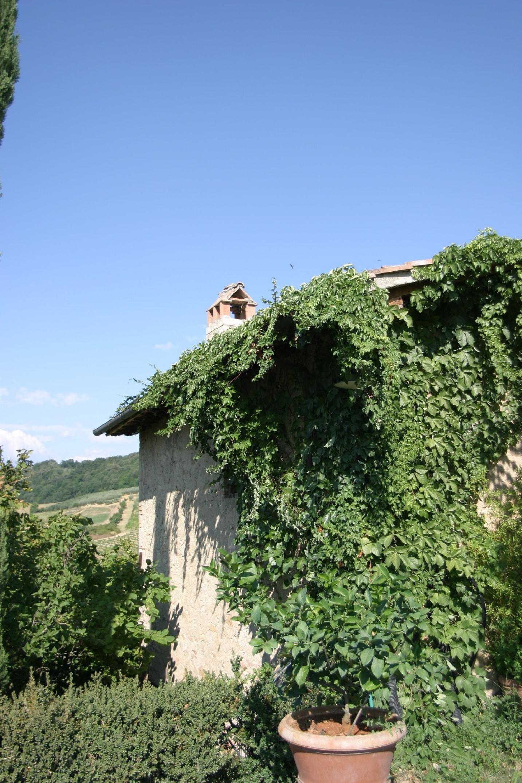 Apartment Tenuta Il Tresto - Primula Holiday Home photo 31807416